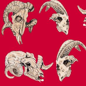 Red Animal skulls