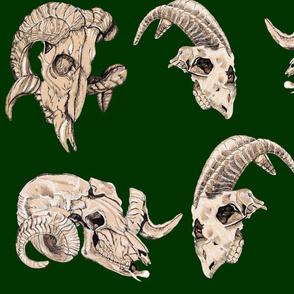Forest Green Animal Skulls