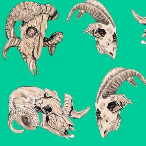 Teal Animal Skulls