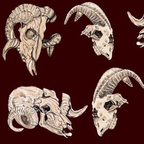 Deep Maroon Animal  Skulls