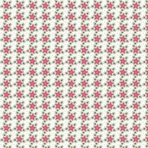 calidoscopy-rose-final-ed