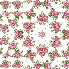 rose-calido-new