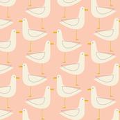 Seagulls Blush