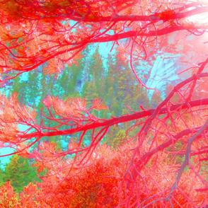 Treedom in Crimson and Pine
