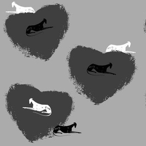 heart for sighthounds