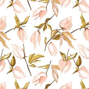 Tender physalis flowers