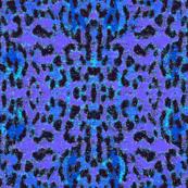 galaxy leopard -blue