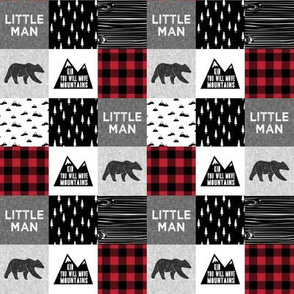"(1 1/3""  small scale) Little Man & You Will Move Mountains Quilt Top - buffalo plaid (bear) C19BS"
