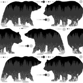 bears pattern b
