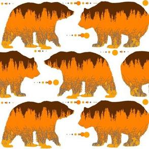 bears pattern o