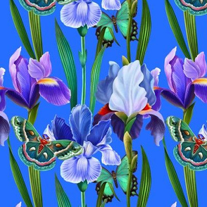 Summer garden with irises and butterflies