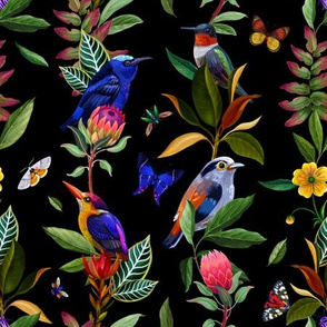 Exotic birds, tropical plants and butterflies