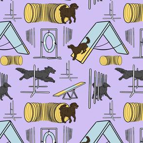 Simple Flat Coated Retriever agility dogs - purple