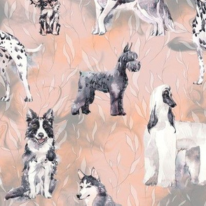 sweet dogs tuxedo Black and White on coral apricot and grey watercolor FLWRHT