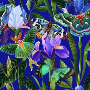 Irises and butterflies in the night garden