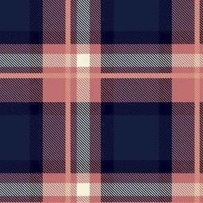 Pink and Blue Plaid V.06