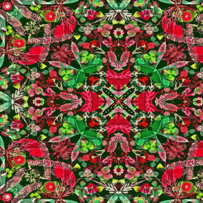 Kaleidoscope Holiday Poinsettia