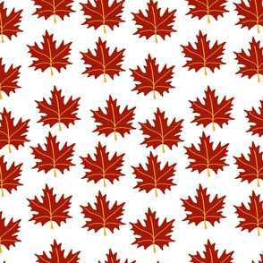 Maple leaf fall