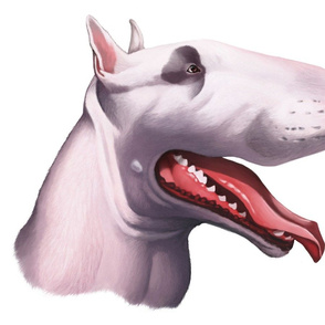 English Bull Terrier Cartoon Caricature