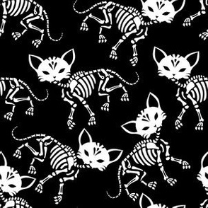 Cute skeletons of cats