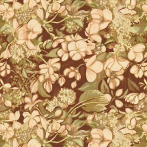 blush-begonias