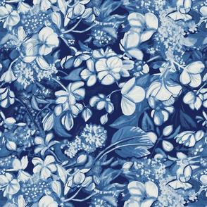 begonia_blue_porcelain