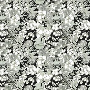 begonia_lichen_gray