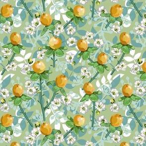 Yellow Hypericum Berries | Celery 2