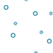 White Snowflake Stars | LARGE