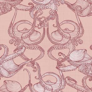 Cephalopod - Octopi - Blush