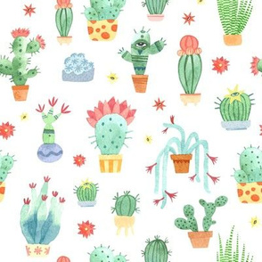 Watercolor cacti on white