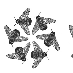 bee radial pattern