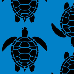 Jumbo Black Turtles on Turquoise Blue