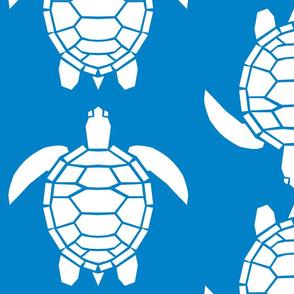 Jumbo White Turtles on Turquoise Blue