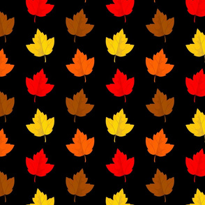 Colorful Fall Leaves with Black Background (Medium Size)