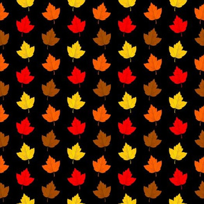 Colorful Fall Leaves with Black Background (Small Size)