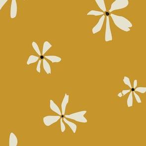 mustard hawaii