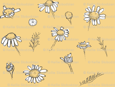 Rchamomile-white-and-yellow_preview