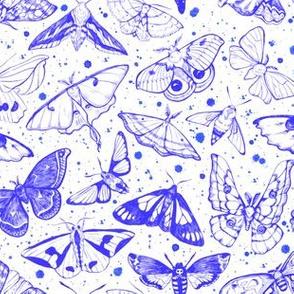 Moth Magic in Blue 1/2 size