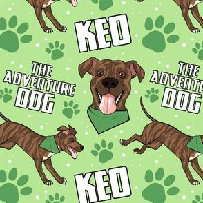 Keo the Adventure Dog