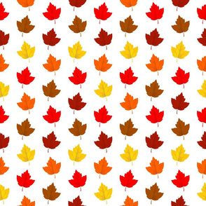 Colorful Autumn Leaves (Small Size)