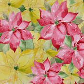 Red and Yellow Poinsettia Pattern