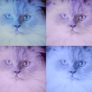 Loki in pastels