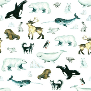 Arctic Pals / Watercolour Arctic Animals on White Background