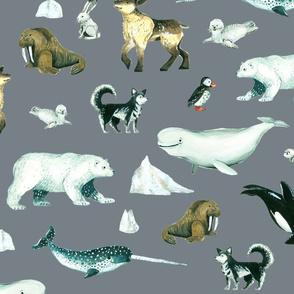 Arctic Pals / Watercolour Arctic Animals on Grey Background