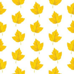 Yellow Autumn Leaves (Small Size)