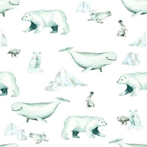 White Arctic Animals and Ice on White Background - Smaller Size