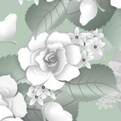 White Roses - Sage