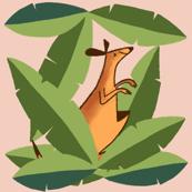 Hiding Kangaroo