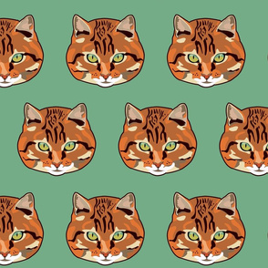 RED CAT GREEN